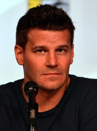 446px-David_Boreanaz_Comic-Con_2012
