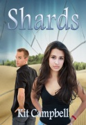 Shards_Cover_small_2