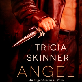 What We're Reading: Angel Kin by Tricia Skinner